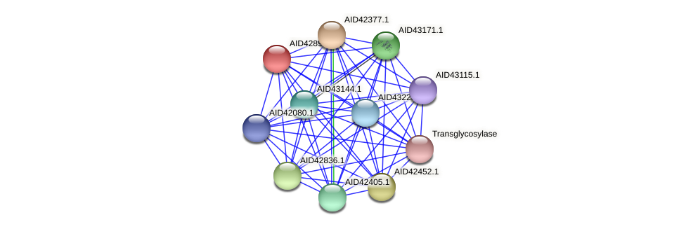 AID42898.1 protein (Staphylococcus xylosus) - STRING interaction network