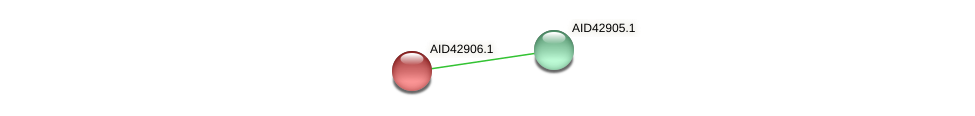 AID42906.1 protein (Staphylococcus xylosus) - STRING interaction network