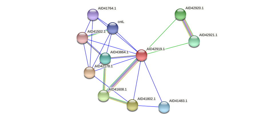 AID42919.1 protein (Staphylococcus xylosus) - STRING interaction network