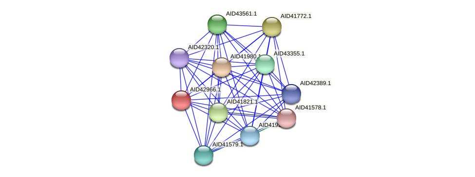 AID42966.1 protein (Staphylococcus xylosus) - STRING interaction network