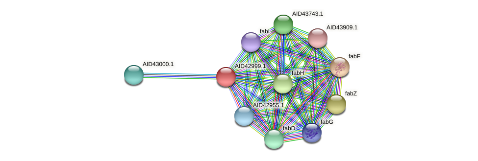 AID42999.1 protein (Staphylococcus xylosus) - STRING interaction network