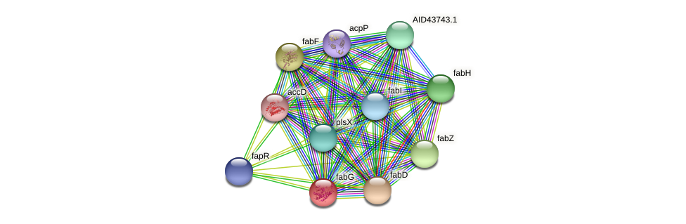 AID43007.1 protein (Staphylococcus xylosus) - STRING interaction network
