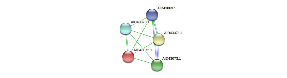 AID43072.1 protein (Staphylococcus xylosus) - STRING interaction network