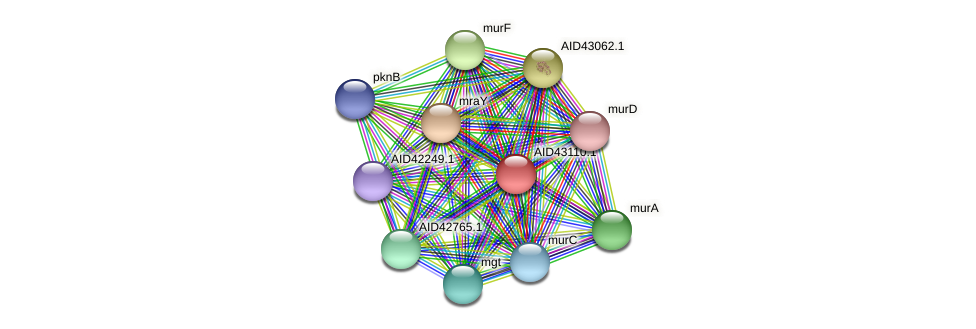 AID43110.1 protein (Staphylococcus xylosus) - STRING interaction network