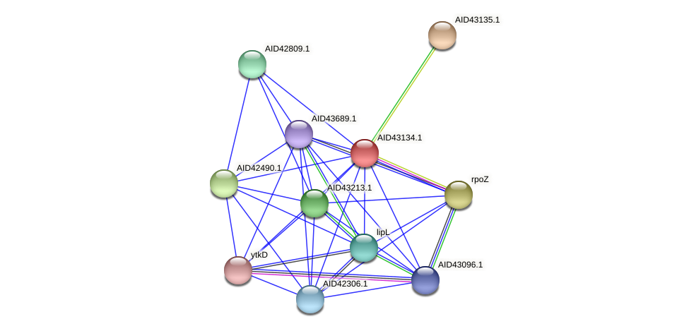 AID43134.1 protein (Staphylococcus xylosus) - STRING interaction network