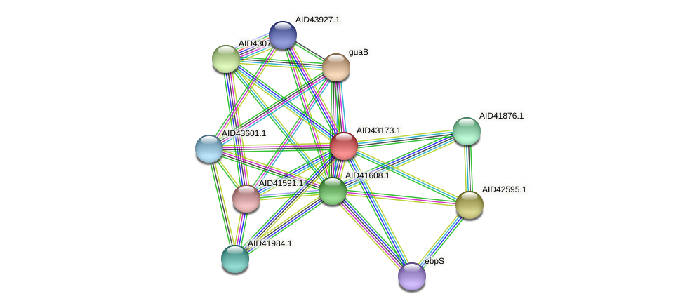 AID43173.1 protein (Staphylococcus xylosus) - STRING interaction network