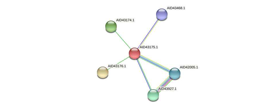 AID43175.1 protein (Staphylococcus xylosus) - STRING interaction network