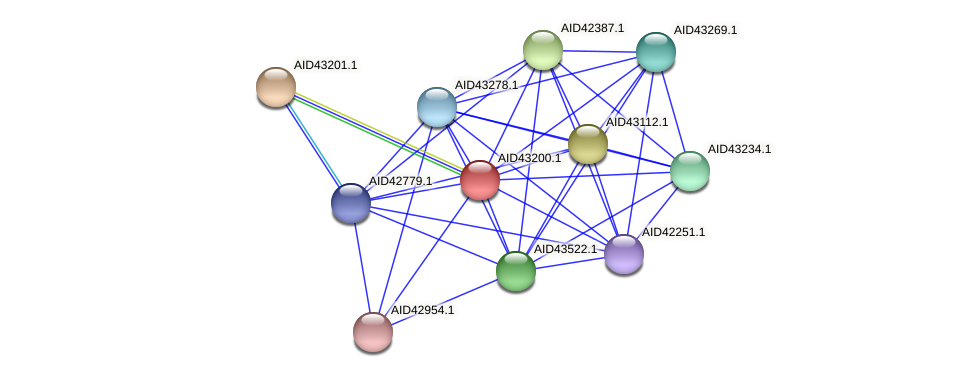 AID43200.1 protein (Staphylococcus xylosus) - STRING interaction network