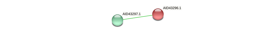 AID43296.1 protein (Staphylococcus xylosus) - STRING interaction network
