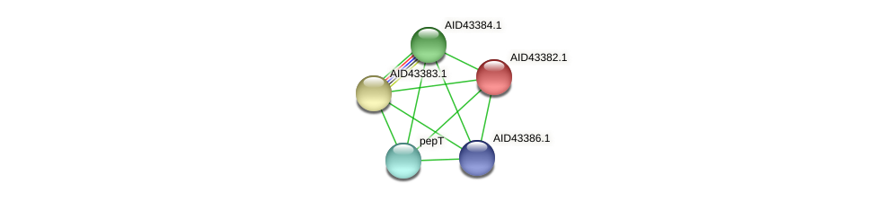 AID43382.1 protein (Staphylococcus xylosus) - STRING interaction network
