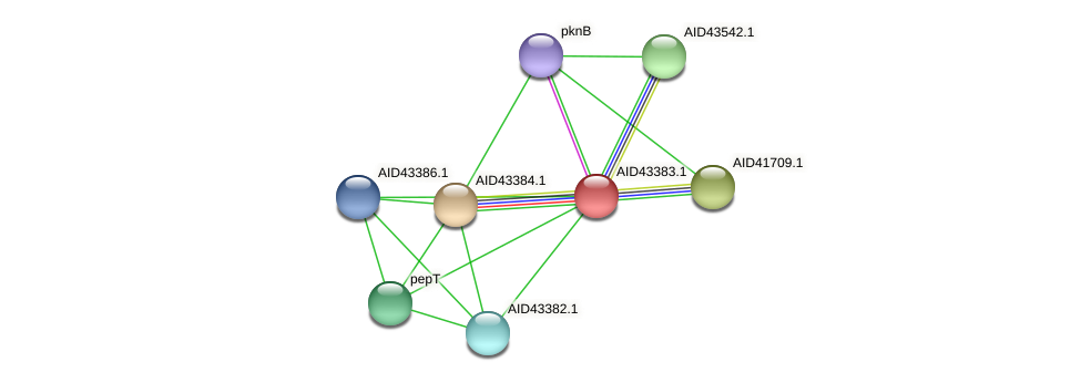 AID43383.1 protein (Staphylococcus xylosus) - STRING interaction network