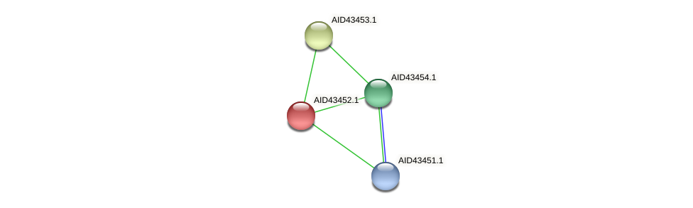 AID43452.1 protein (Staphylococcus xylosus) - STRING interaction network
