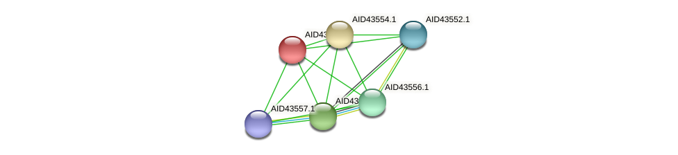 AID43553.1 protein (Staphylococcus xylosus) - STRING interaction network