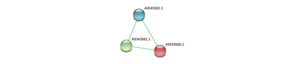 AID43580.1 protein (Staphylococcus xylosus) - STRING interaction network