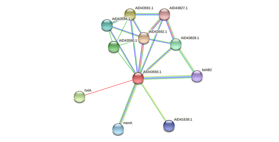AID43593.1 protein (Staphylococcus xylosus) - STRING interaction network