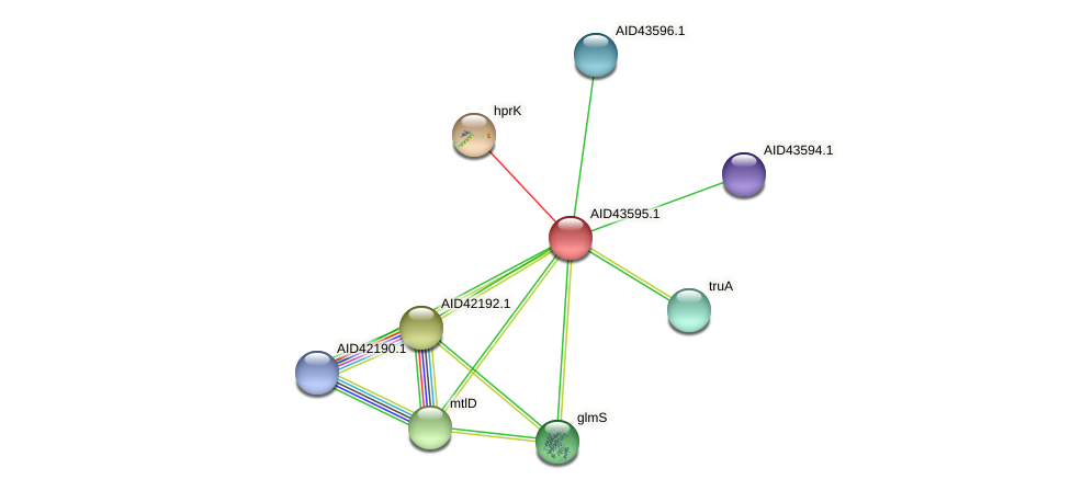 AID43595.1 protein (Staphylococcus xylosus) - STRING interaction network