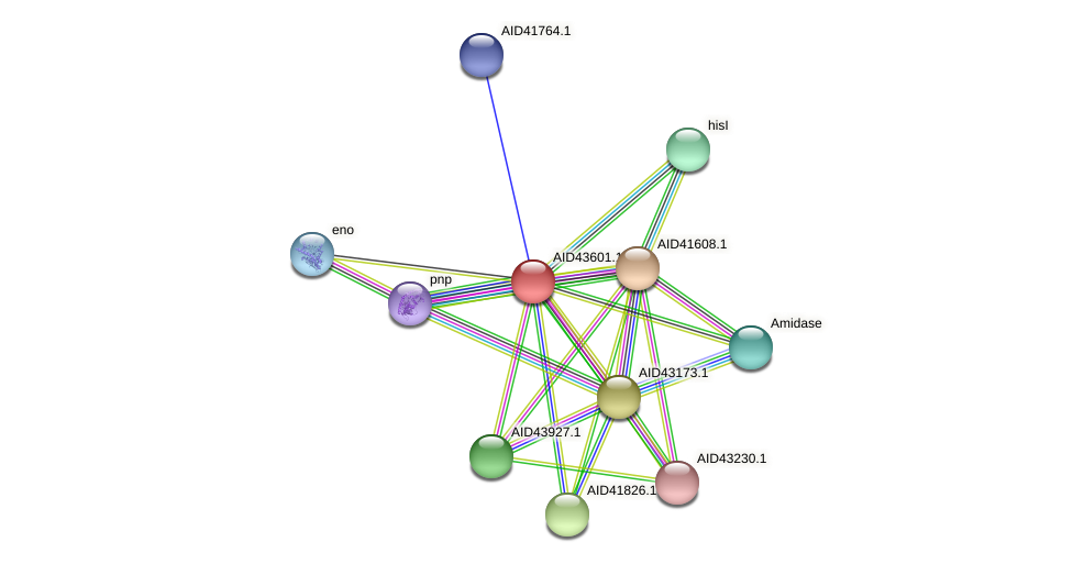 AID43601.1 protein (Staphylococcus xylosus) - STRING interaction network