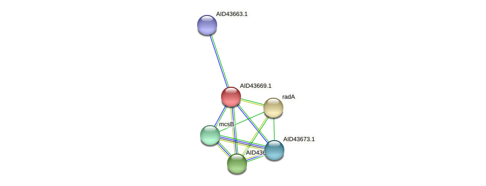 AID43669.1 protein (Staphylococcus xylosus) - STRING interaction network