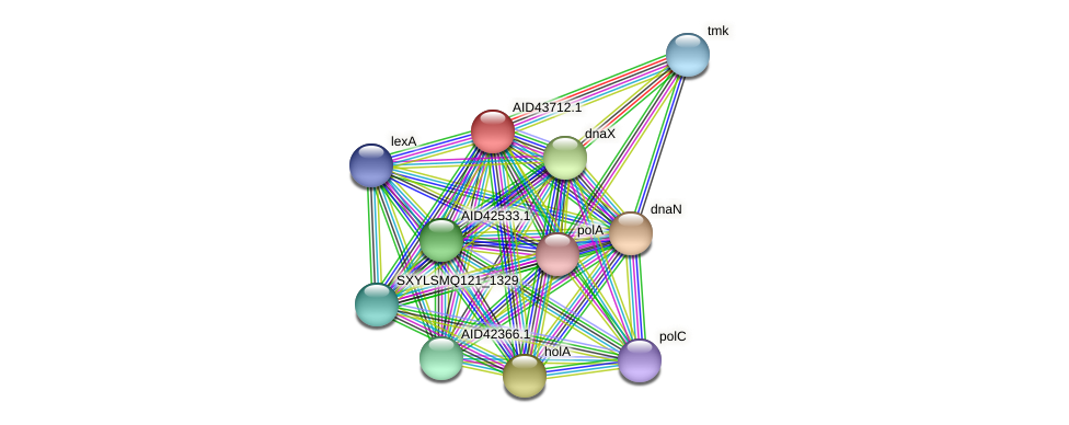 AID43712.1 protein (Staphylococcus xylosus) - STRING interaction network