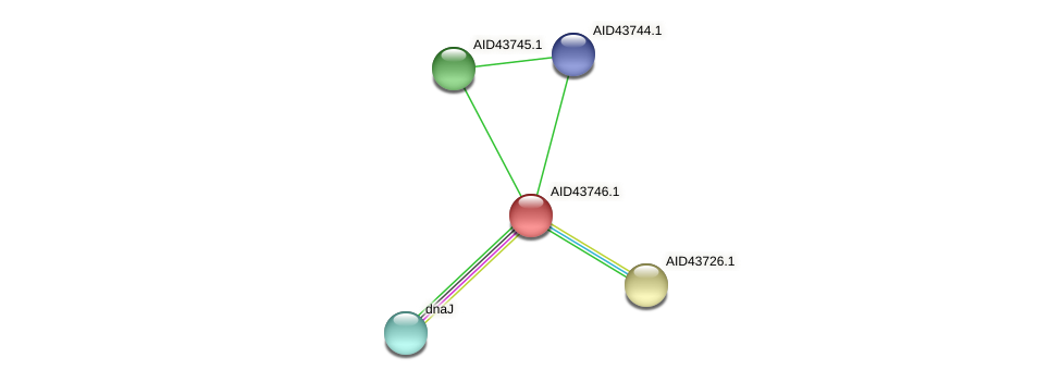 AID43746.1 protein (Staphylococcus xylosus) - STRING interaction network