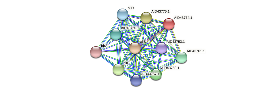 AID43774.1 protein (Staphylococcus xylosus) - STRING interaction network
