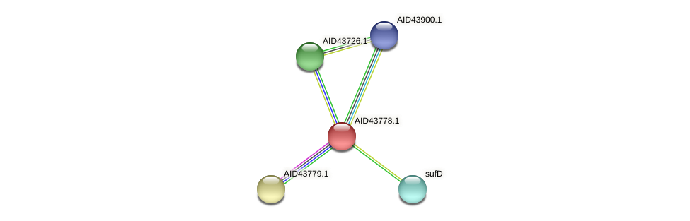 AID43778.1 protein (Staphylococcus xylosus) - STRING interaction network