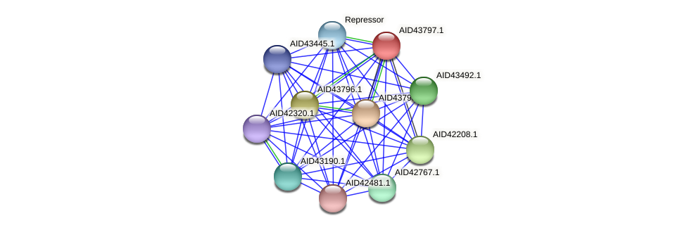 AID43797.1 protein (Staphylococcus xylosus) - STRING interaction network