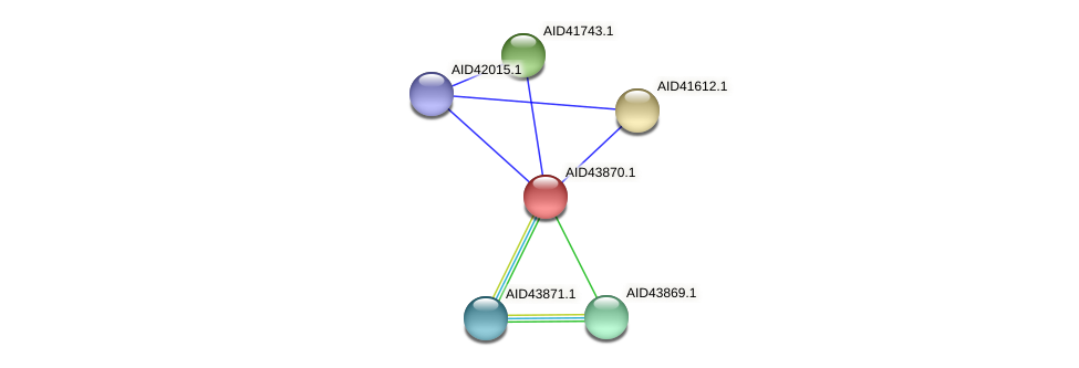 AID43870.1 protein (Staphylococcus xylosus) - STRING interaction network