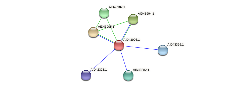 AID43906.1 protein (Staphylococcus xylosus) - STRING interaction network