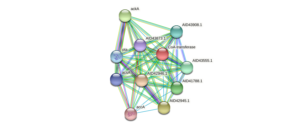 AID43912.1 protein (Staphylococcus xylosus) - STRING interaction network