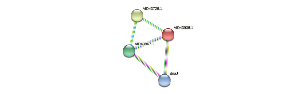 AID43936.1 protein (Staphylococcus xylosus) - STRING interaction network