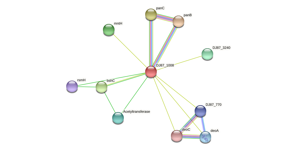 panE_1 protein (Bacillus cereus) - STRING interaction network