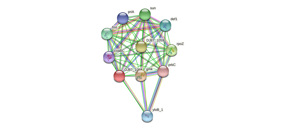DJ87_1058 protein (Bacillus cereus) - STRING interaction network