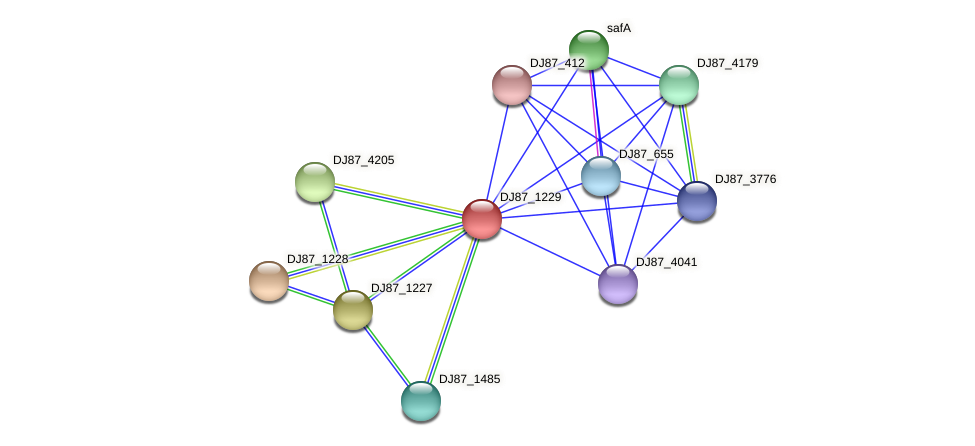 DJ87_1229 protein (Bacillus cereus) - STRING interaction network