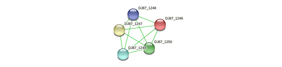 DJ87_1246 protein (Bacillus cereus) - STRING interaction network