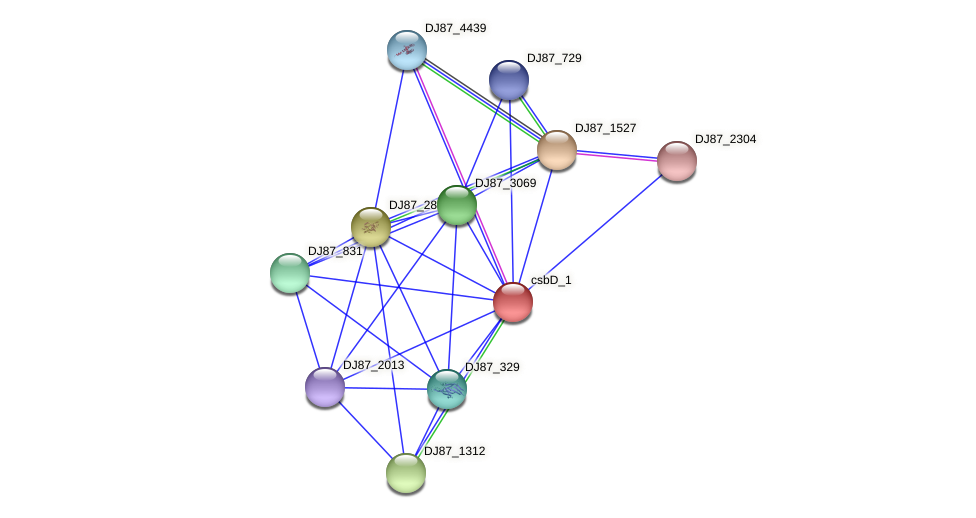 csbD_2 protein (Bacillus cereus) - STRING interaction network