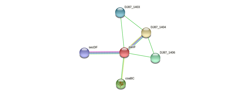 panF protein (Bacillus cereus) - STRING interaction network