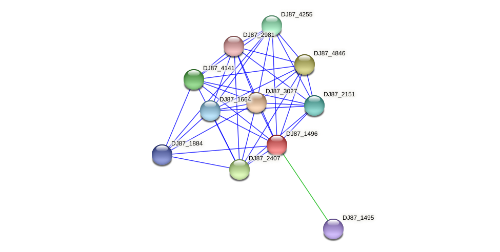B4079_1035 protein (Bacillus cereus) - STRING interaction network