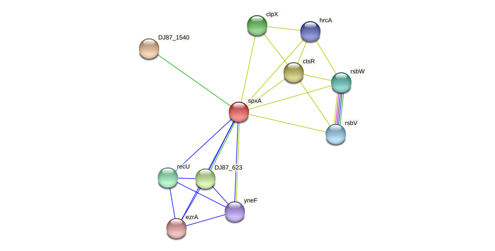 DJ87_1539 protein (Bacillus cereus) - STRING interaction network