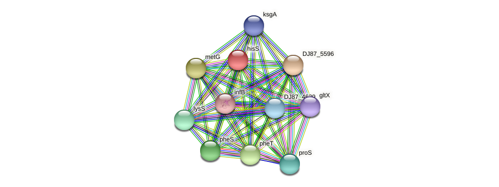 hisS_2 protein (Bacillus cereus) - STRING interaction network