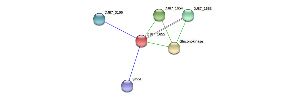 ycaD_1 protein (Bacillus cereus) - STRING interaction network