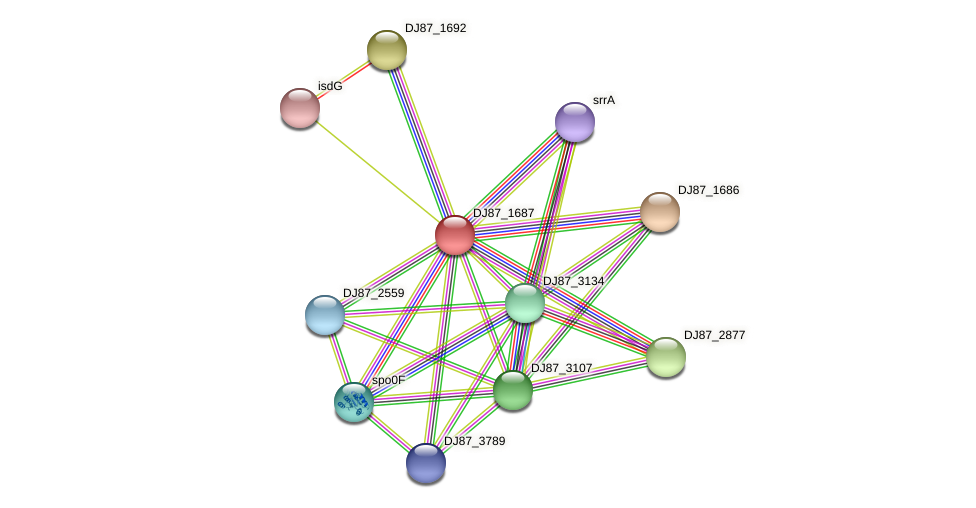hssS protein (Bacillus cereus) - STRING interaction network