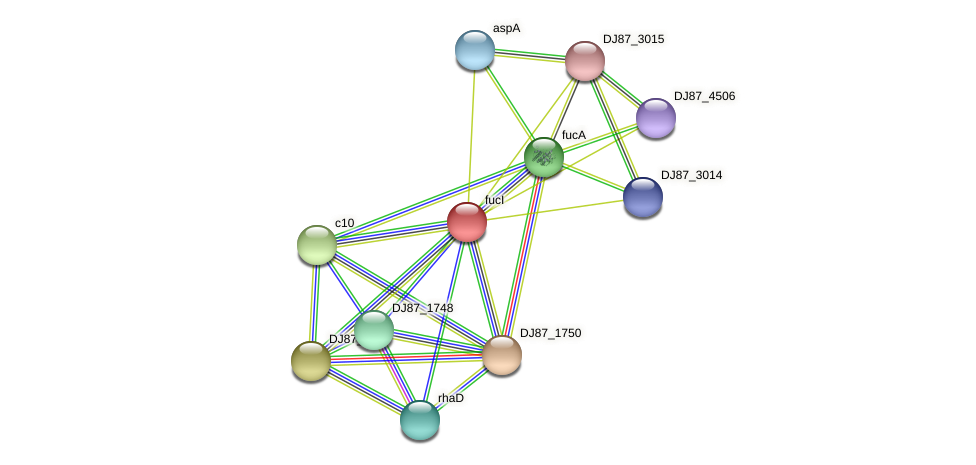 fucI protein (Bacillus cereus) - STRING interaction network