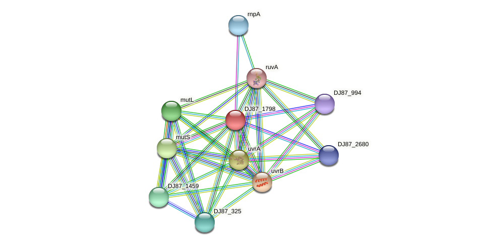 DJ87_1798 protein (Bacillus cereus) - STRING interaction network