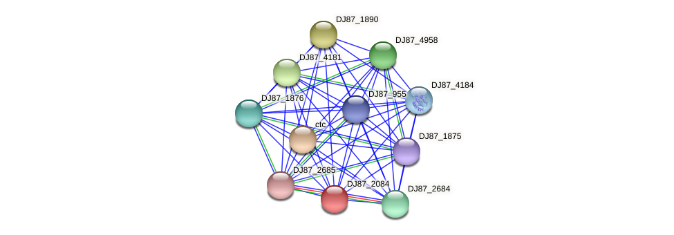 DJ87_2084 protein (Bacillus cereus) - STRING interaction network