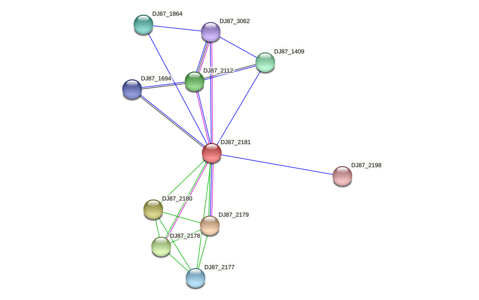 DJ87_2181 protein (Bacillus cereus) - STRING interaction network