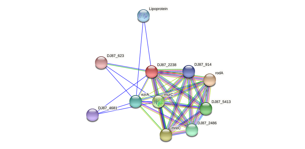 pbpH_4 protein (Bacillus cereus) - STRING interaction network