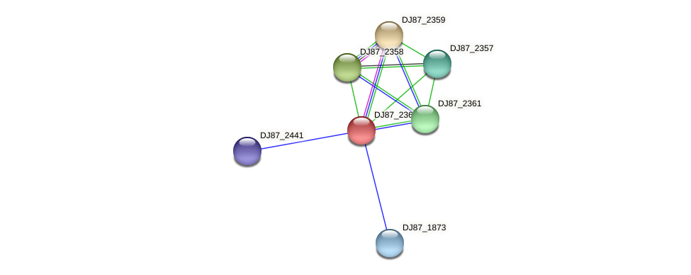 DJ87_2360 protein (Bacillus cereus) - STRING interaction network