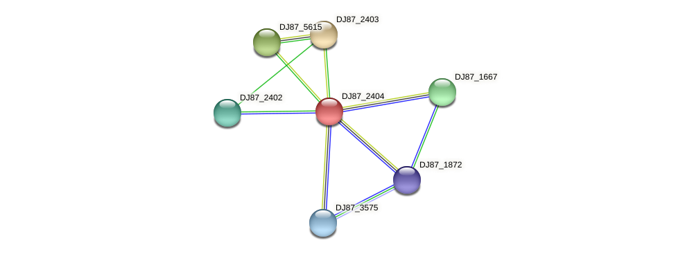 DJ87_2404 protein (Bacillus cereus) - STRING interaction network