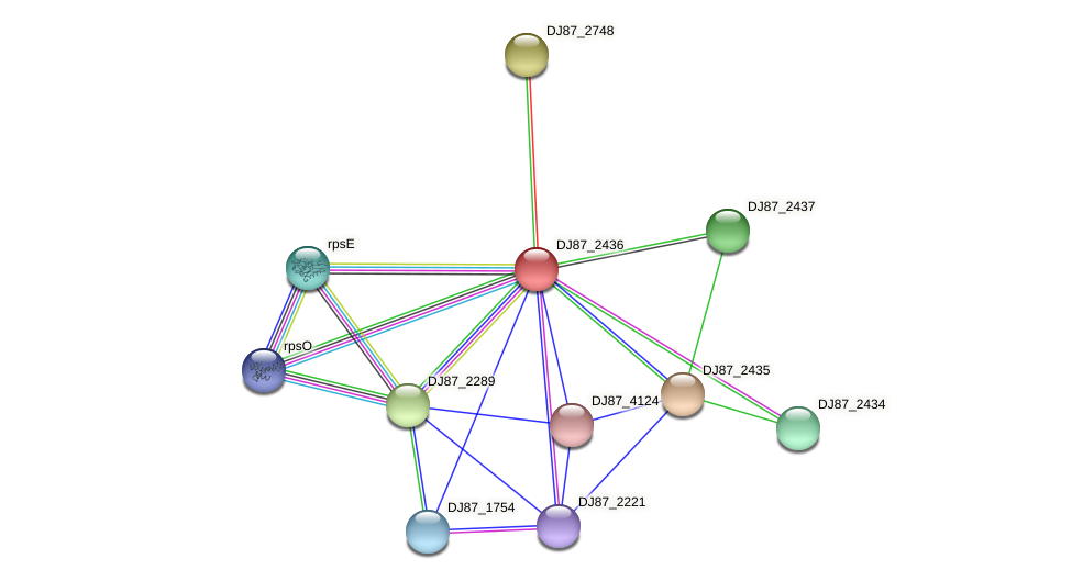 bsmA protein (Bacillus cereus) - STRING interaction network